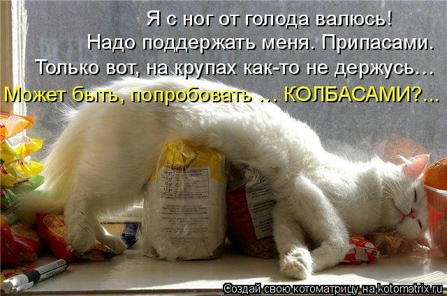 kotomatritsa_Ob (640x425, 166Kb)