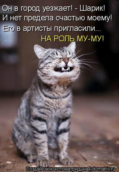 kotomatritsa_pR (410x591, 109Kb)