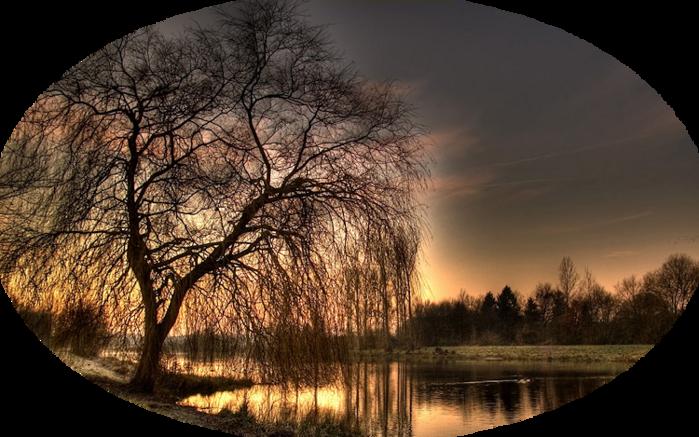 1460_sundaymorningii_1920x1200-1024x640 (700x437, 591Kb)