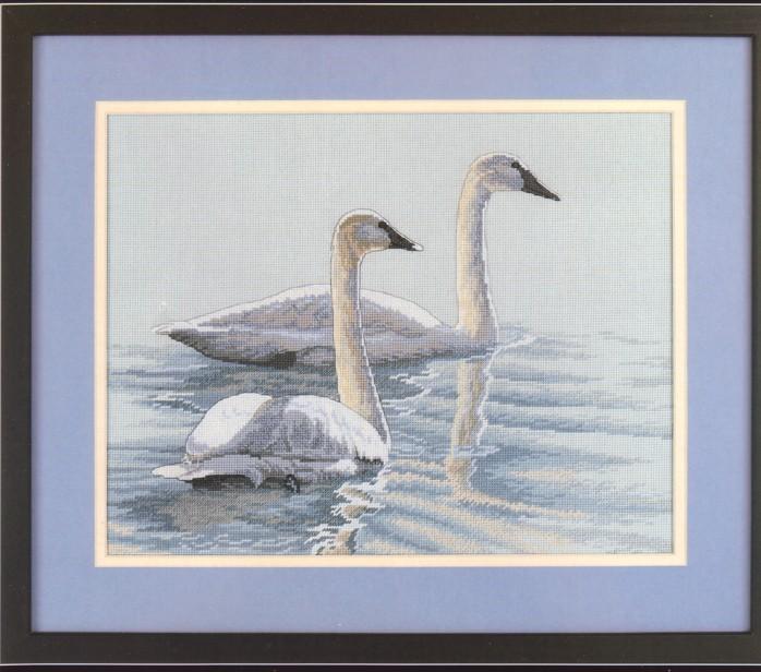 swans_pic (698x616, 106Kb)