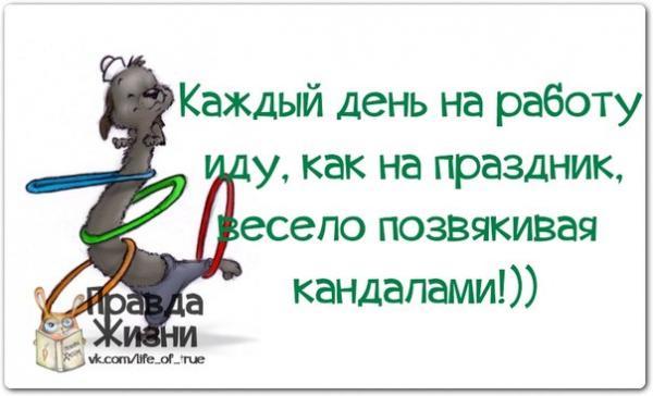 smeshnie_kartinki_139516136870 (600x364, 132Kb)