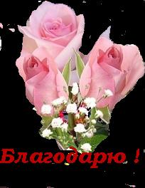 букет розовый (204x264, 76Kb)