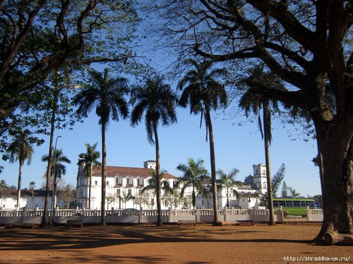 India Goa 2014 (125) (700x525, 384Kb)