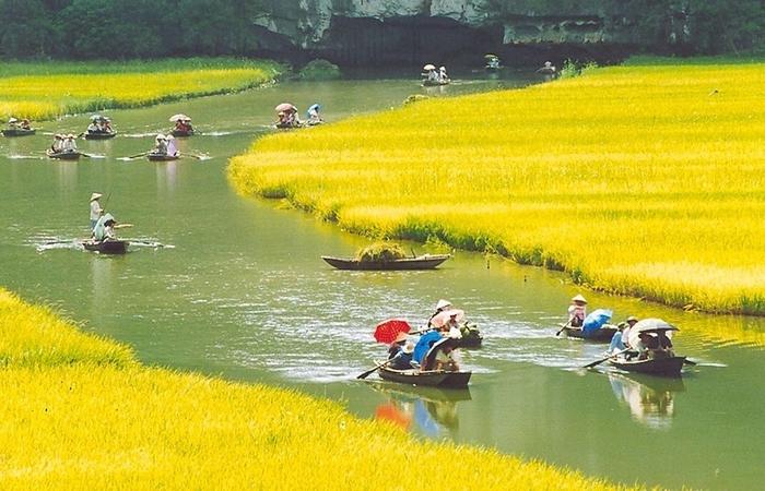 Красота гор и рисовых полей Там Кок5 (700x450, 276Kb)