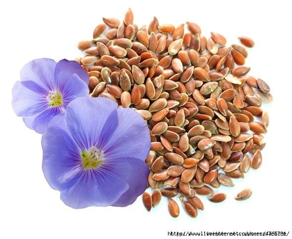 похудеть спомощью семя льна