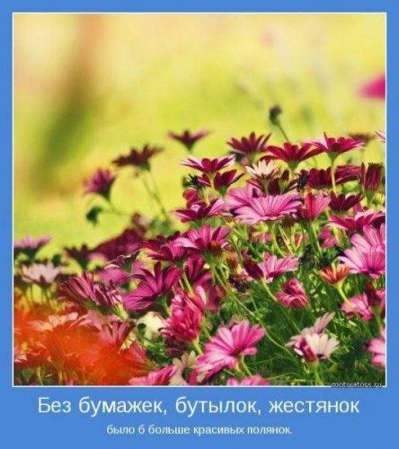 1368762585_www.radionetplus.ru-26 (444x500, 113Kb)