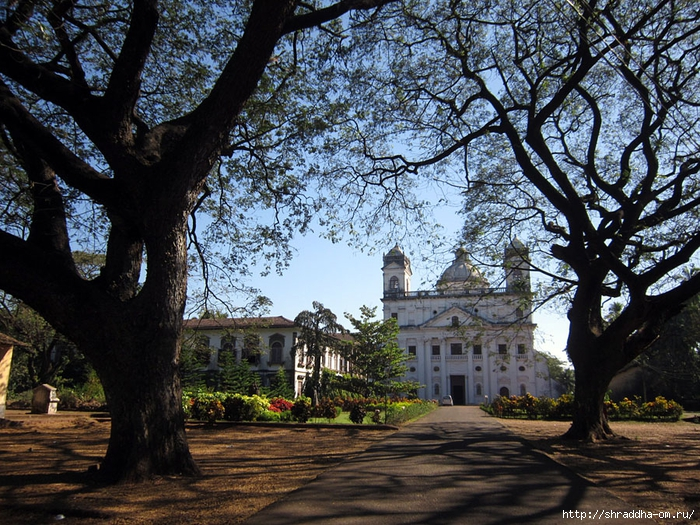 India Goa 2014 (145) (700x525, 430Kb)