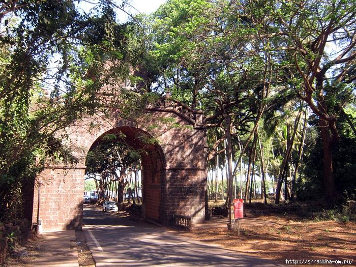India Goa 2014 (159) (700x525, 511Kb)