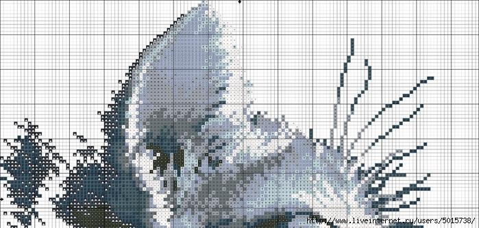 107508297_large_MQFN5M6gFu (700x333, 233Kb)