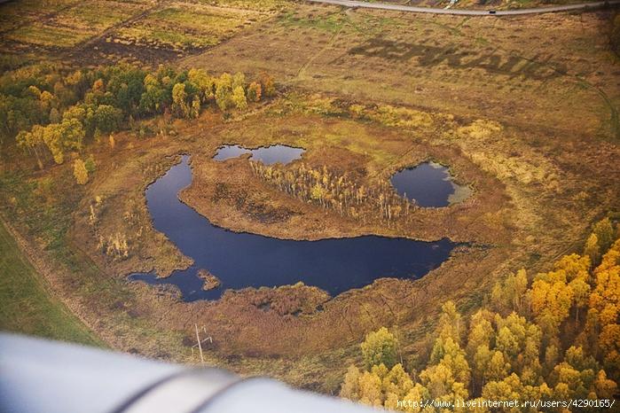 http://img1.liveinternet.ru/images/attach/c/10/111/549/111549571_IMG_3664_web.jpg