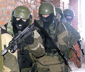 Арест украинского диверсанта (295x249, 28Kb)