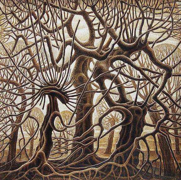 Дерево-дикобраз (576x573, 724Kb)