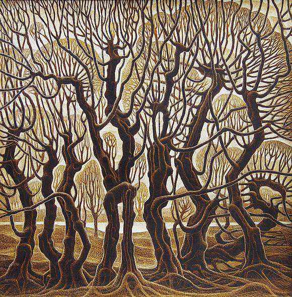 Любовь деревьев, день (580x589, 749Kb)