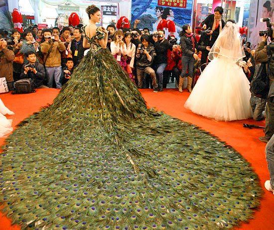 свадебное платье из павлиньих перьев 1 (550x462, 387Kb)