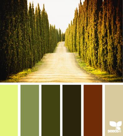 ColorRoad_1 (395x436, 209Kb)