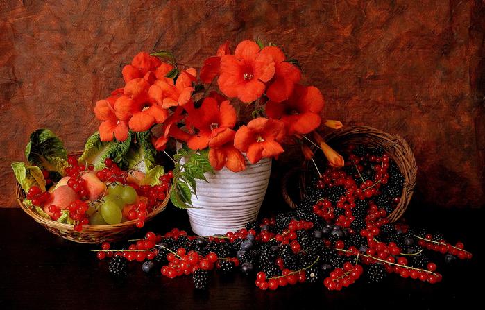 натюрморт, ягода 10 (700x447, 486Kb)
