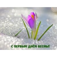 images_3383 (200x200, 29Kb)