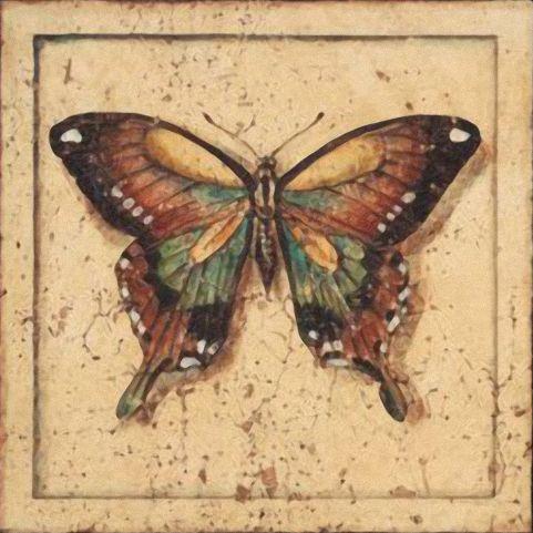Бабочки и другие насекомые. Картинки для декупажа (1) (481x481, 185Kb)