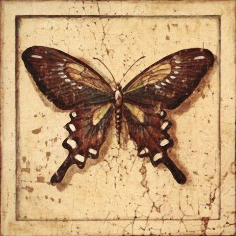 Бабочки и другие насекомые. Картинки для декупажа (2) (481x481, 202Kb)