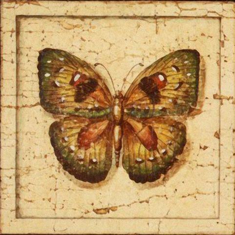 Бабочки и другие насекомые. Картинки для декупажа (3) (481x481, 211Kb)