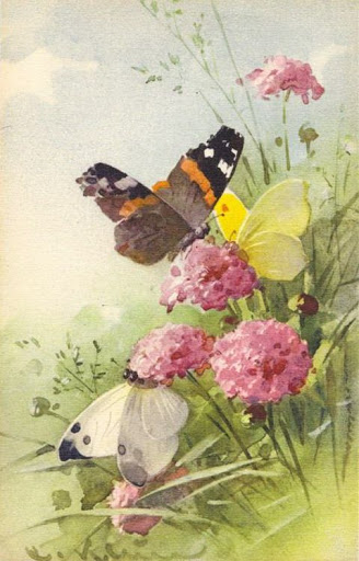 Бабочки и другие насекомые. Картинки для декупажа (5) (328x512, 149Kb)