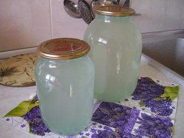 Сохранить березовый сок в домашних условиях 238