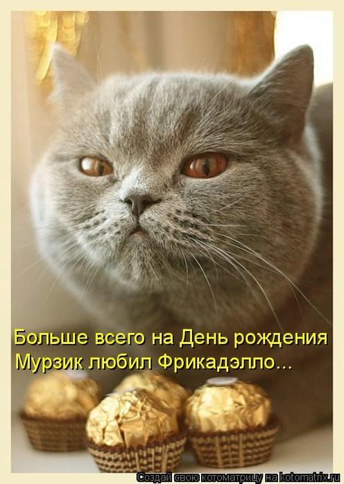kotomatritsa_4Y (496x700, 219Kb)