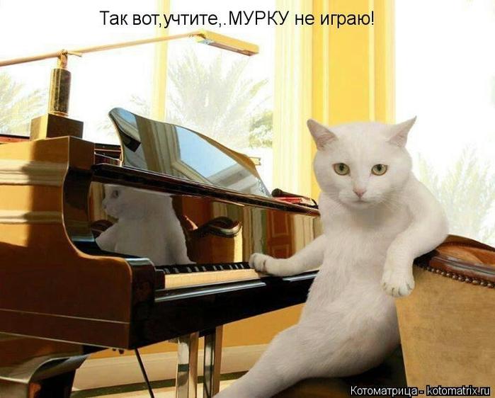 kotomatritsa_eb (700x562, 224Kb)