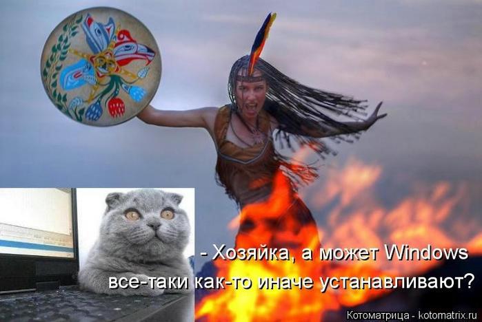 kotomatritsa_YP (700x468, 199Kb)