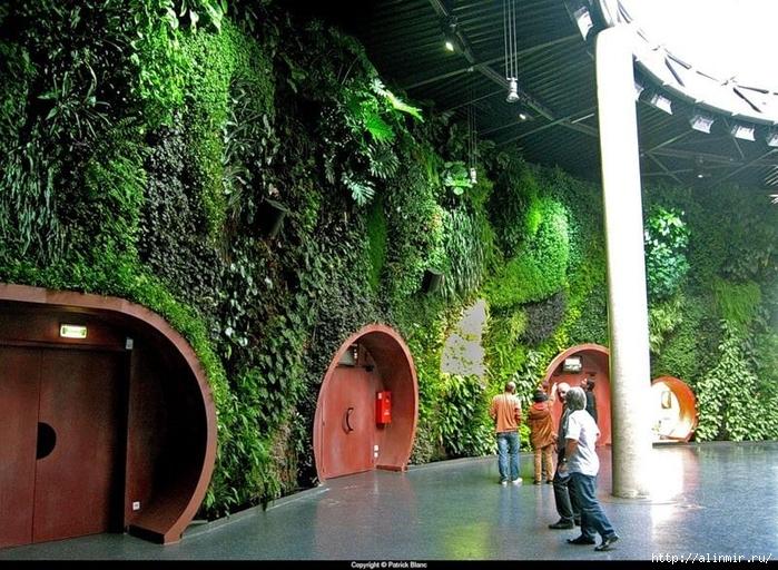 Живые стены Патрика Бланка17 (700x512, 371Kb)