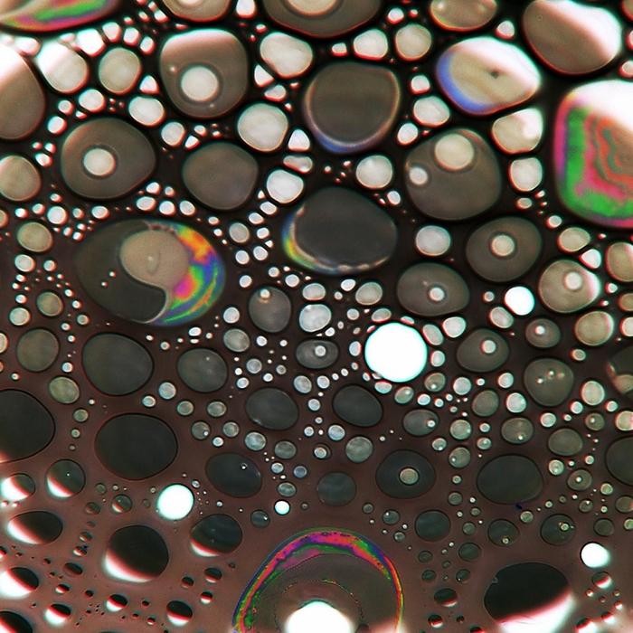 макро фото 10 (700x700, 569Kb)