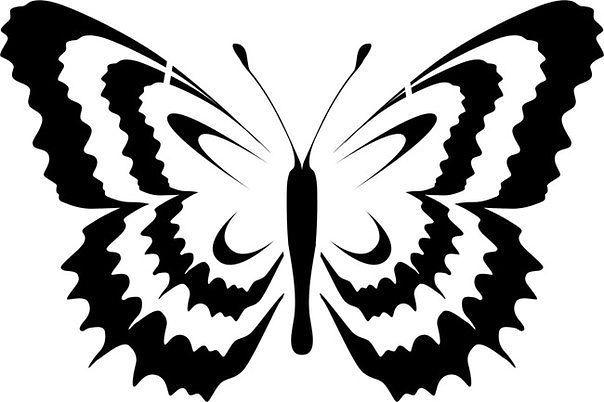 бабочки9 (604x402, 36Kb)