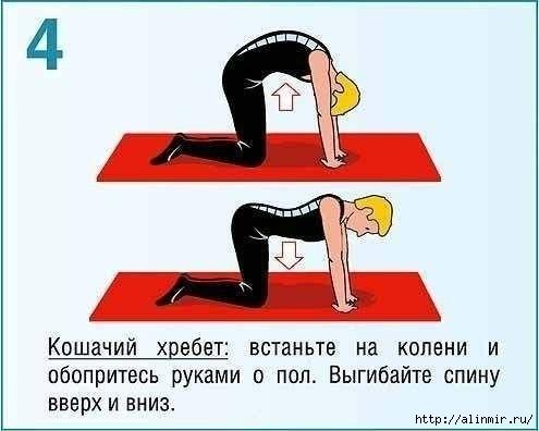 Как исправить осанку упражнения4 (495x396, 68Kb)