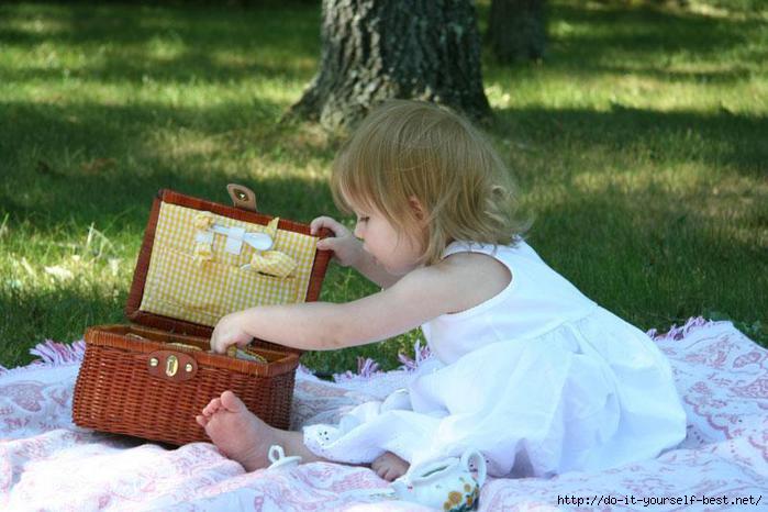 1335738333_picnic_1 (700x466, 154Kb)
