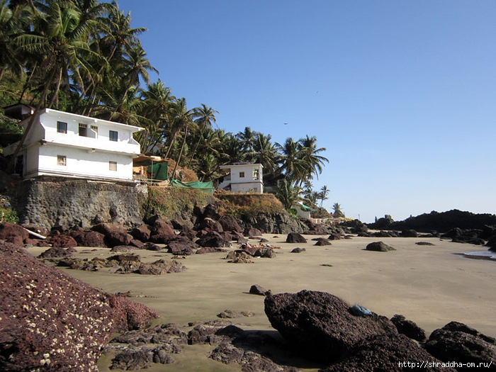 India Goa 2014 (54) (700x525, 305Kb)