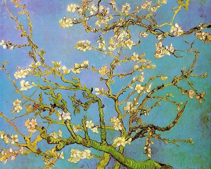 4. Винсент Ван Гог - Миндальные ветви в цвету (700x560, 620Kb)