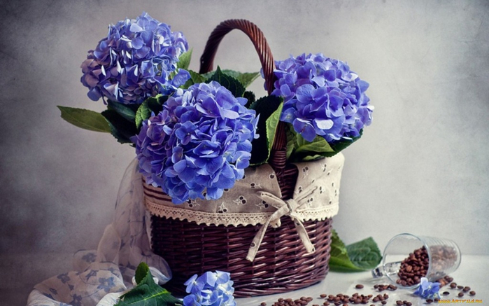 flowers_in_basket_08 (700x437, 297Kb)