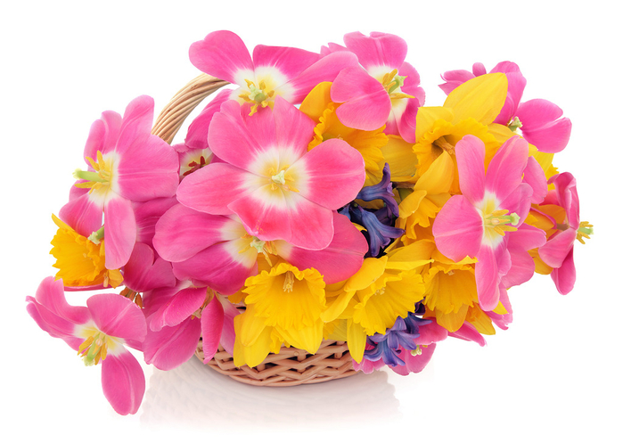 flowers_in_basket_27 (700x497, 314Kb)