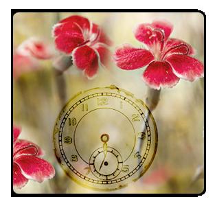 ава_время (316x300, 152Kb)