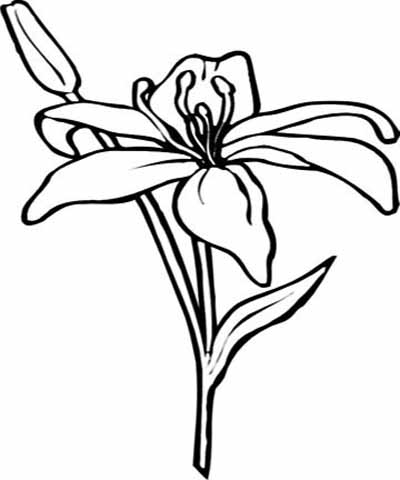 flower-coloring-pages-22 (400x480, 67Kb)