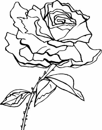 flower-coloring-pages-104 (400x508, 99Kb)
