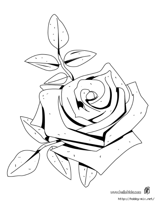rose-coloring-page-source-e93 (541x700, 117Kb)
