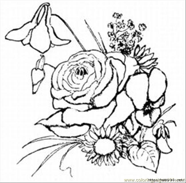 printable-coloring-page-rose-med-natural-world-flowers (650x640, 151Kb)