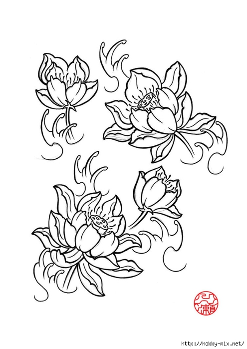 newest-lotus-flower-by-laranj-dztyp (495x700, 140Kb)