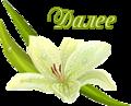 5230261_dalee_belaya_liliya (120x97, 18Kb)