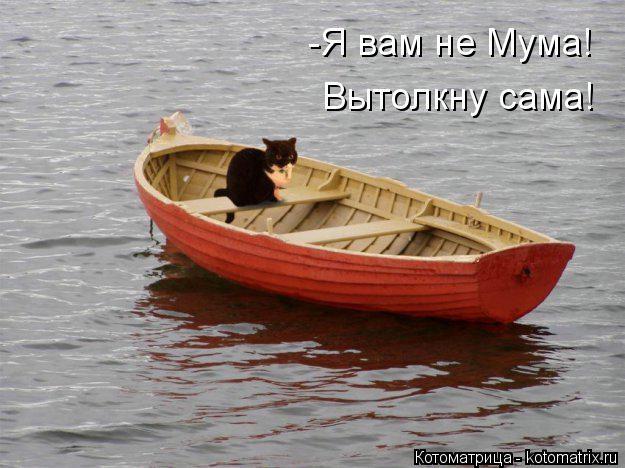 kotomatritsa_QU (625x468, 144Kb)