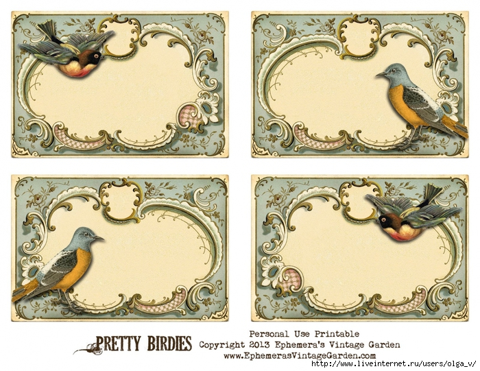 4964063_PrettyBirdies (700x541, 354Kb)