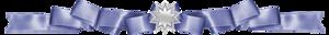 0_8782f_52f9cafe_M (300x32, 20Kb)