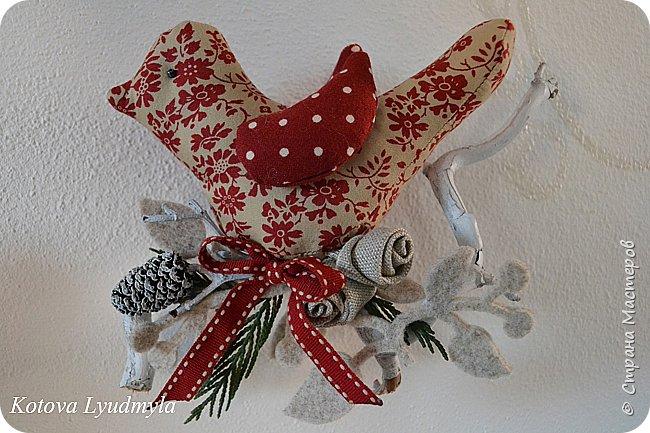 Как сшить рождественских птичек/1783336_189801_dsc_5058 (650x433, 89Kb)