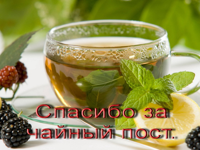Food_Drinks_Tea_with_mint_023595_ (700x525, 116Kb)